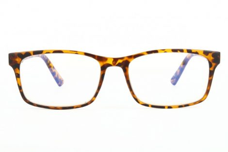 Naočare za kompjuter BLF73A
