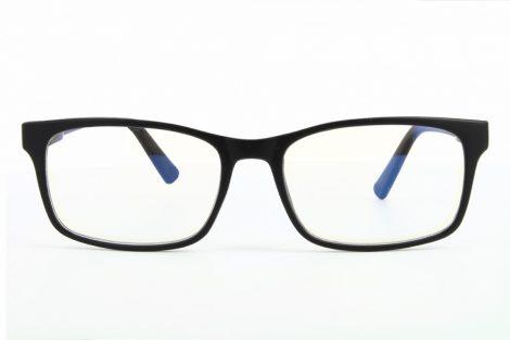 Naočare za kompjuter BLF73